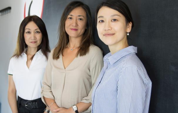 Centro de Cultura Asiática de Málaga lanza Wabasi, la primera plataforma de cursos online de idiomas asiáticos