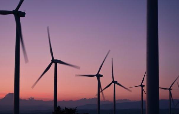 Forestalia arrasa en la 'macrosubasta' de las renovables y se adjudica 1.200 MW