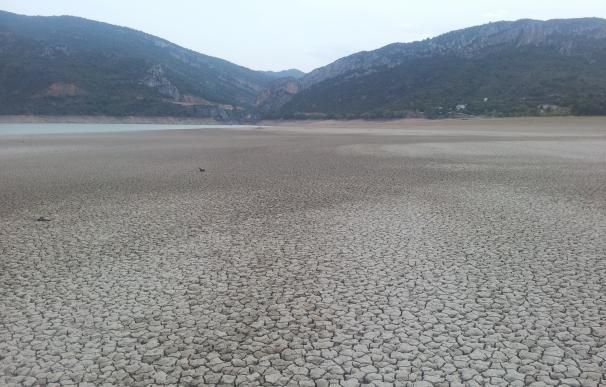 Desarrollo Rural prepara una orden de ayudas por la sequía
