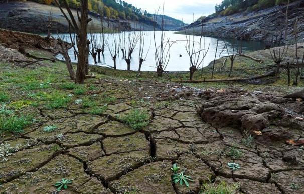 La sequía y el pinchazo renovable amenazan con disparar la luz