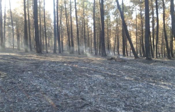 El Infoex mantiene activo el Nivel 2 en el incendio en Gata por previsiones de viento y altas temperaturas