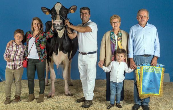 La vaca miss de Central Lechera Asturiana