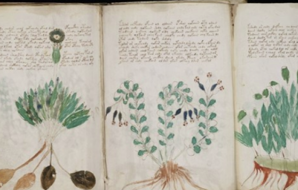 Fotografía del manuscrito Voynich.