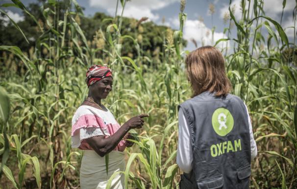 Una trabajadora de Oxfam en una plantación de Burkina Faso