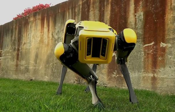 El perro de Boston Dynamics.