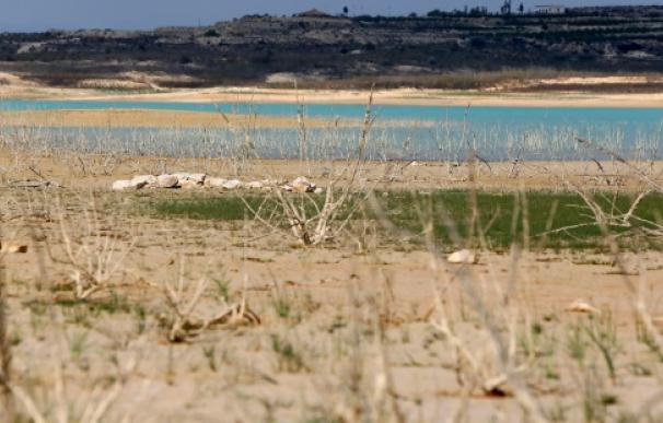 Regantes del Círculo del Agua piden una mejora de precios.