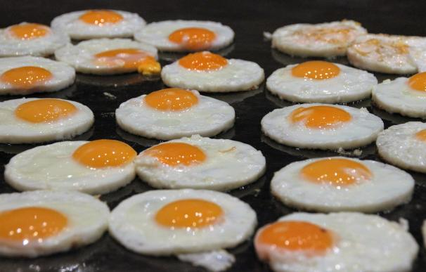 Fotografía de huevos fritos.