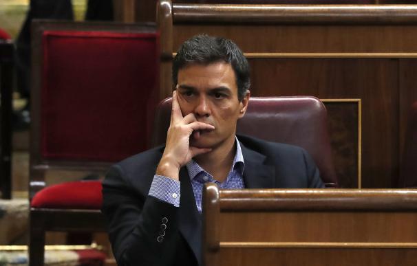 fotografía Pedro Sánchez