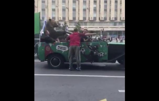 Fotografía del oso que tocó la vuvuzela en el centro de Moscú.