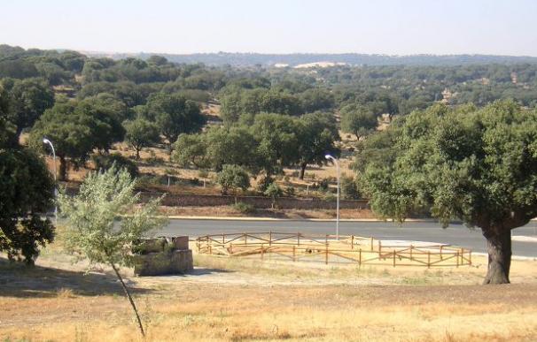 La Urbanización El Encinar está situada en el término municipal de Terradillos, en la carretera de Salamanca a Alba de Tormes a diez kilómetros de la capital (Ayuntamiento de Terradillos)