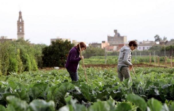 Dos mujeres trabajan en el campo