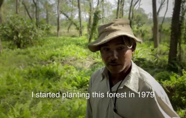 Fotografía de Jadav Payeng, el activista medioambiental de la India.