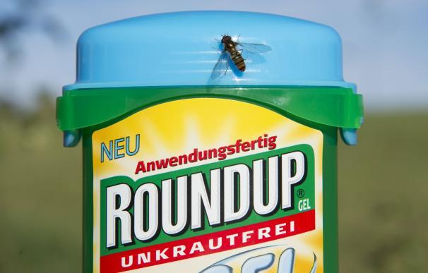 Monsanto ha sido condenada a una fuerte indemnización.