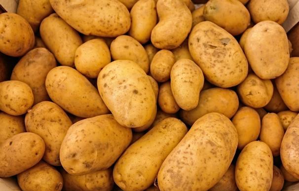 El robo de 50 kg de patatas le puede salir caro.