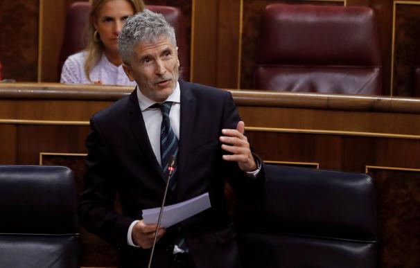 El ministro del Interior Fernando Grande-Marlaska, durante el pleno del Congreso de los Diputados.- EFE/Juan Carlos Hidalgo