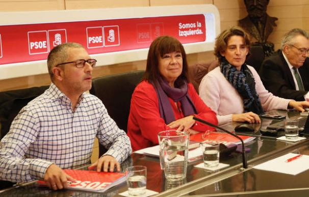 La transición ecológica que dirige Teresa Ribera provoca fricciones en el PSOE.