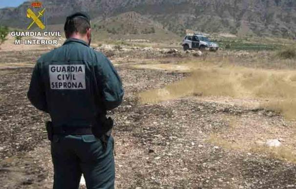 Agente del Seprona en una imagen de archivo. / Guardia Civil