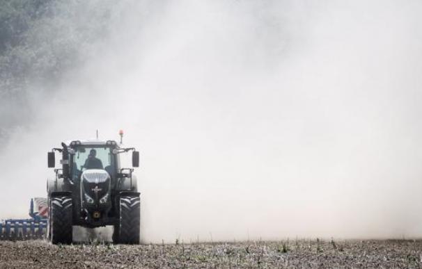 Un tractor en Alemania cruza los cultivos de trigo perdidos por el calor - CLEMENS BILAN (EFE)