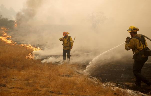 Los incendios de California suman ya 66 muertos y más de 600 desaparecidos. / EFE