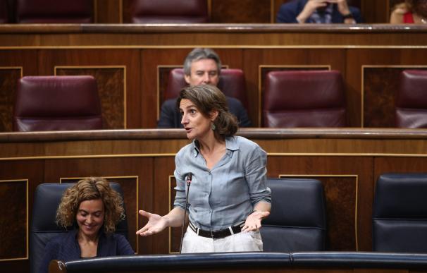 Teresa Ribera interviene en la sesión de control al Gobierno en el Congreso