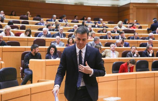 Sesión de control en el Senado con Pedro Sánchez