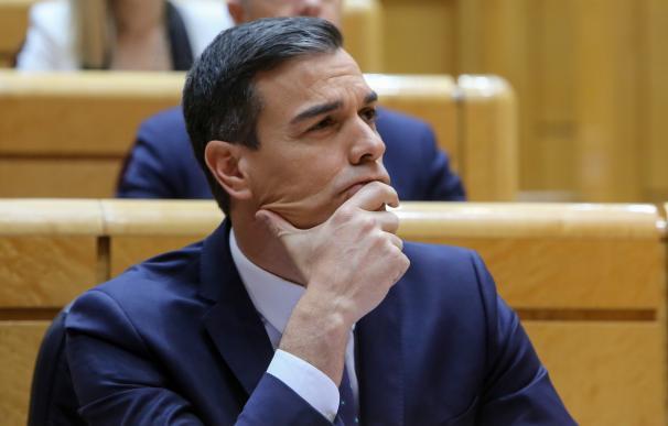 Pedro Sánchez comparece en el pleno del Senado para informar sobre las líneas ge