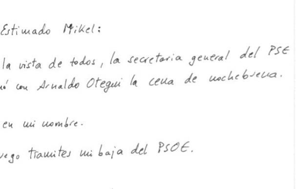 El hijo de Mújica pide su baja del PSOE