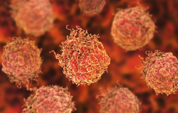 Células en el cáncer de próstata