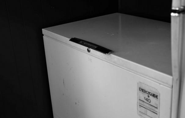 Fotografía de un congelador.