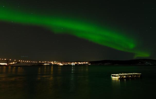 En este safari marino puedes nadar con orcas bajo la aurora boreal.