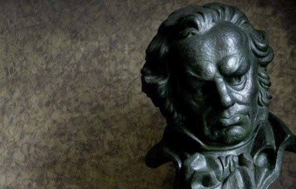 Fotografía de uno de los Premios Goya