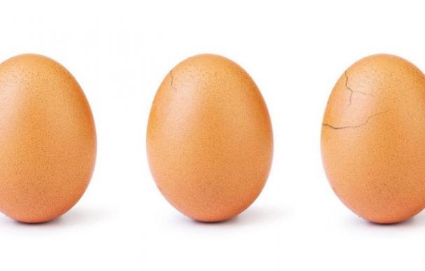 El famoso huevo se está rompiendo. / World_Record_Egg