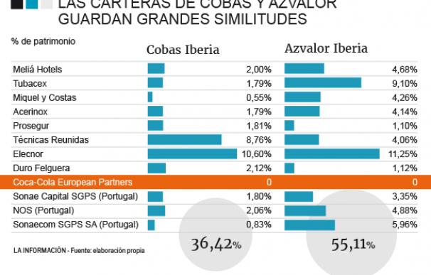 Composición de la cartera de Cobas y Azvalor