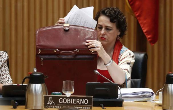 Magdalena Valerio en su comparecencia en el Congreso | EFE