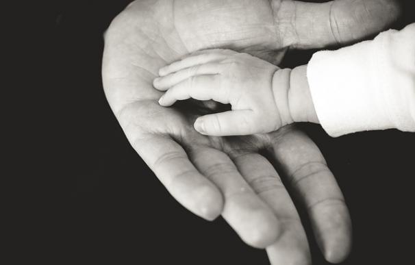 Fotografía de las manos de un bebé y un adulto.