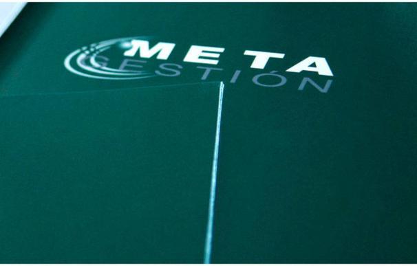 Metagestión