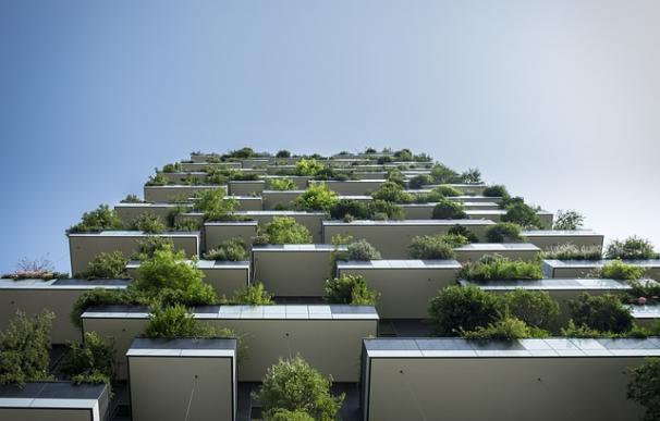 Fotografía de un edificio.