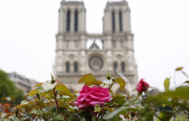 Notre Dame se debe reproducir como era, según arquitecto reconstruyó el Liceo
