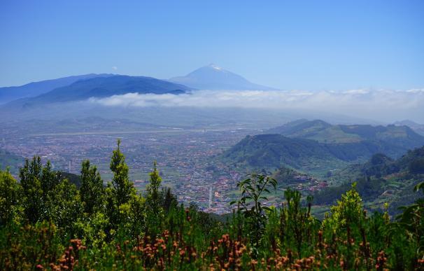 Panorámica con el pico Teide al fondo – Pixabay