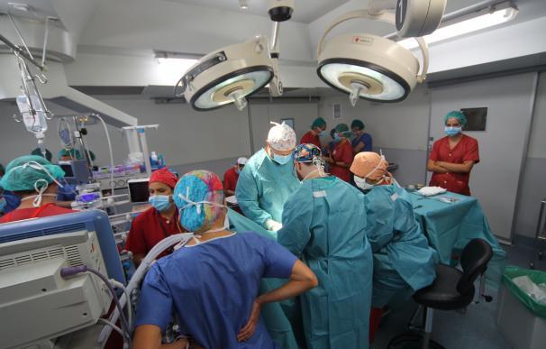 Profesionales sanitarios del hospital público La Paz.
