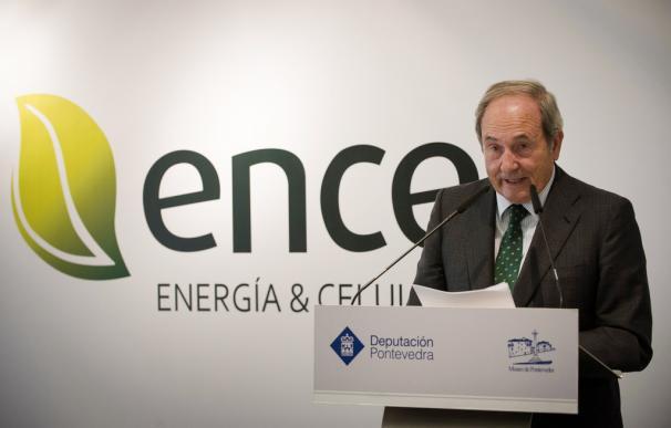 Juan Luis Arregui es presidente de Ence.