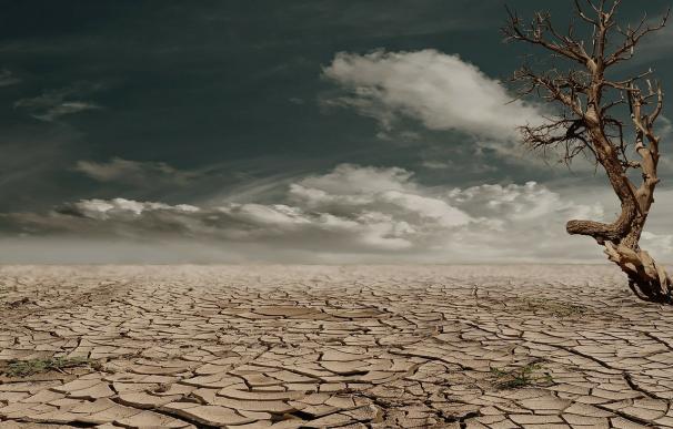 El 50% de la población mundial vivirá en desiertos en 2050