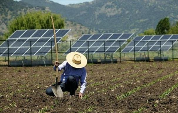 El sector agrícola tira de la nueva potencia fotovoltaica.