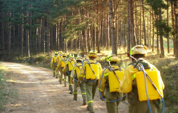 Brigadas de Refuerzo de Incendios Forestales (BRIF) acudiendo a un fuego