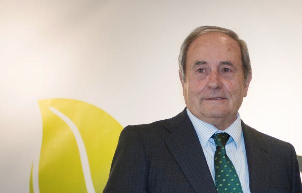Juan Luis Arregui preside Ence Energía.