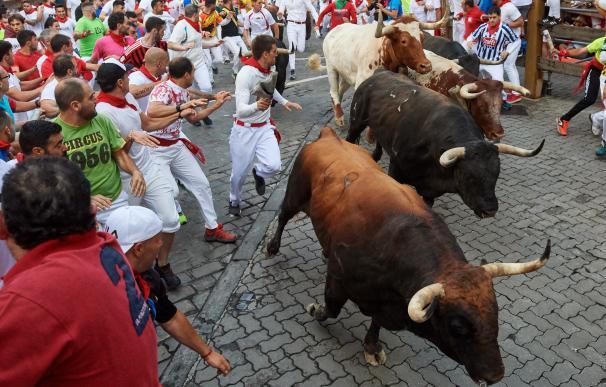 Los toros de la ganadería de La Palmosilla, de Tarifa (Cádiz), a su paso por el tramo de Telefónica, durante el séptimo encierro de los Sanfermines 2019. /EFE/Daniel Fernández