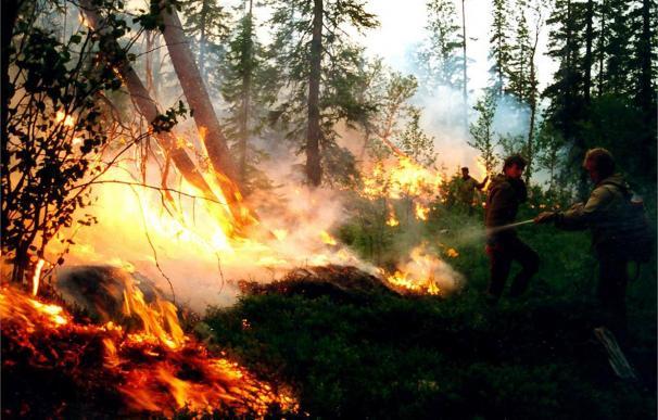 Incendios Siberia