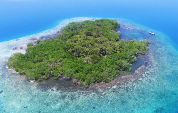 Fotografía de la isla de Belice puesta a la venta por 313.000 euros.