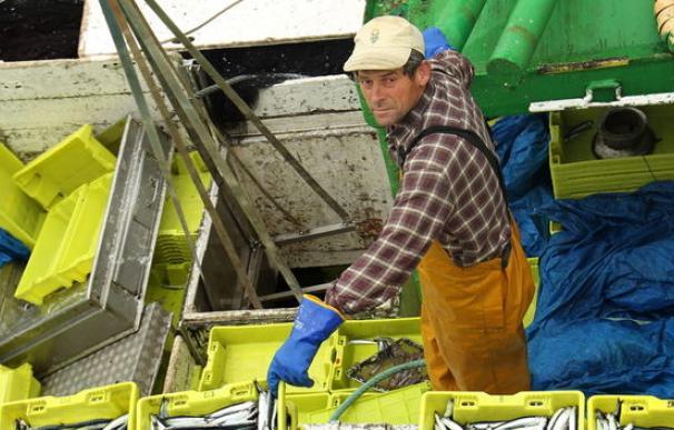 Deportista profesional y marino mercante, los empleos que no cubren los españoles