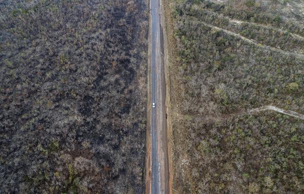 Los incendios del Amazonas ya han quemado el equivalente a 10 Doñanas